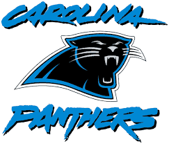 Bank of America Carolina Panthers Stadium.