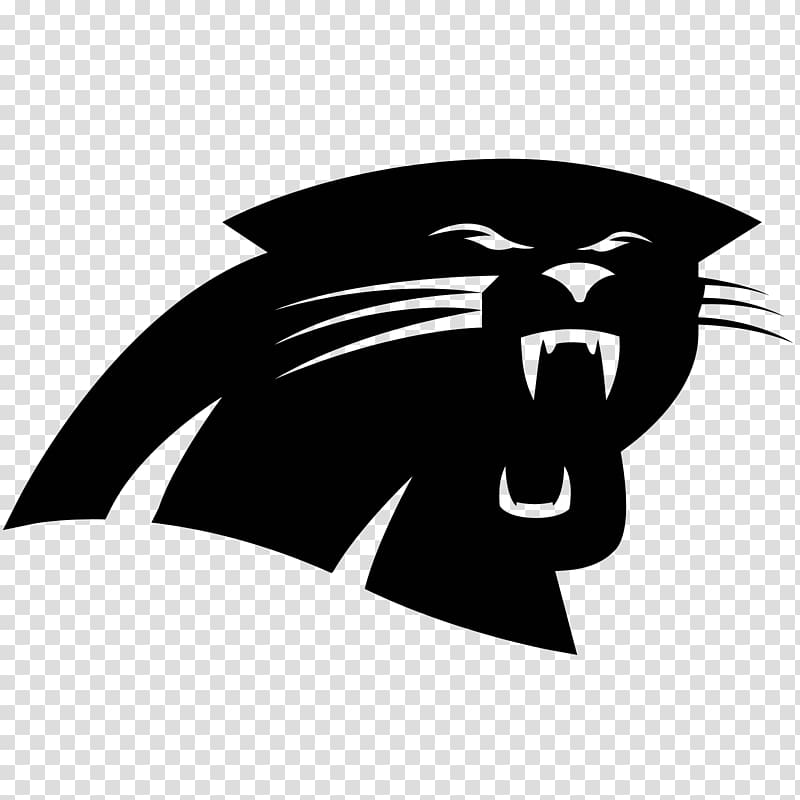 Carolina Panthers NFL Super Bowl Seattle Seahawks Wofford College.