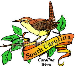 Carolina wren clipart.