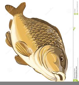 Carp Fishing Clipart.