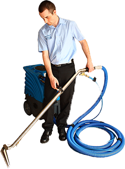 Carpet cleaning png 9 » PNG Image.