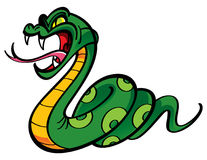 Jungle Carpet Python Attacking Stock Illustrations.
