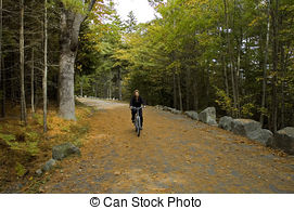 Stock Images of Acadia Carriage Trails.