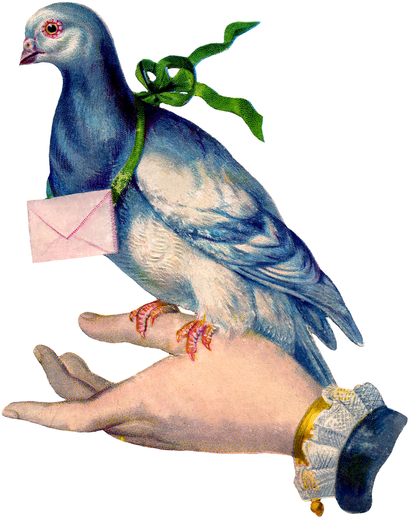 Carrier pigeon clipart rainbow color.
