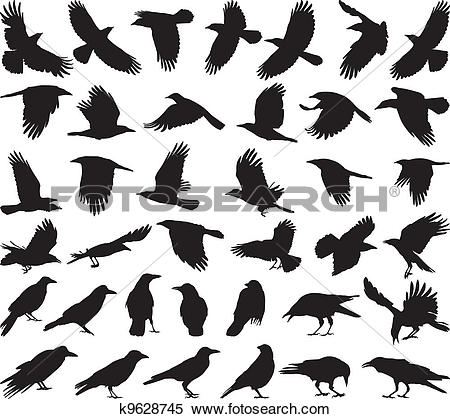 Clipart of Bird carrion crow k9628745.