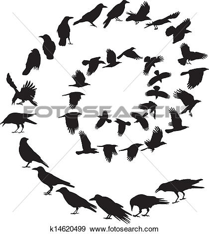 Clip Art of Carrion Crow in a spiral k14620499.
