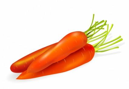 Carrot Clip Art Download.