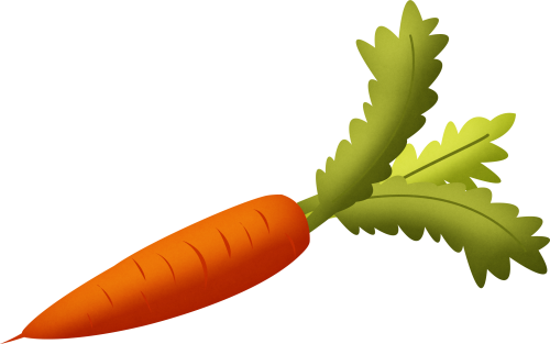 Green carrot clipart.