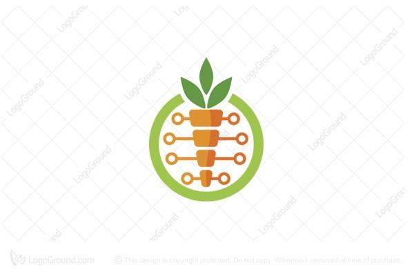 Exclusive Logo 165583, Tecno Carrot Logo.