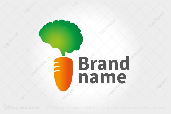 Exclusive Logo 108237, Smart Brain Carrot Logo.