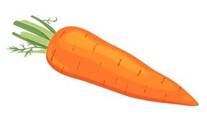 Carrot Nose Clipart.