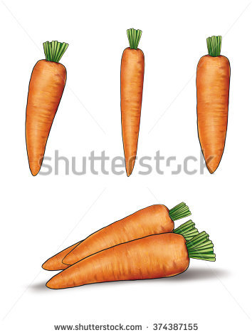 Vector Illustration Carrot Tops Sliced Carrots Stock Vector.