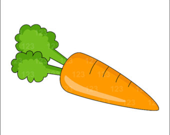 Carrot vegetable clipart #16