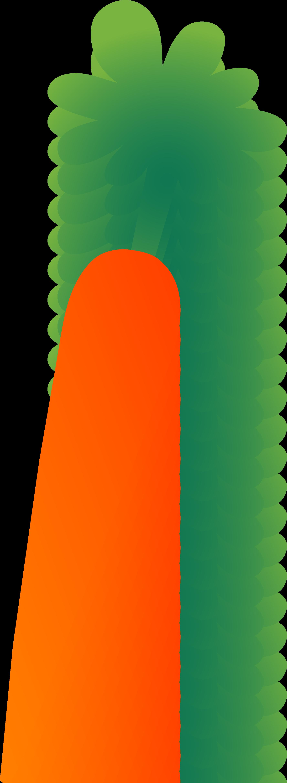Large Single Orange Carrot.