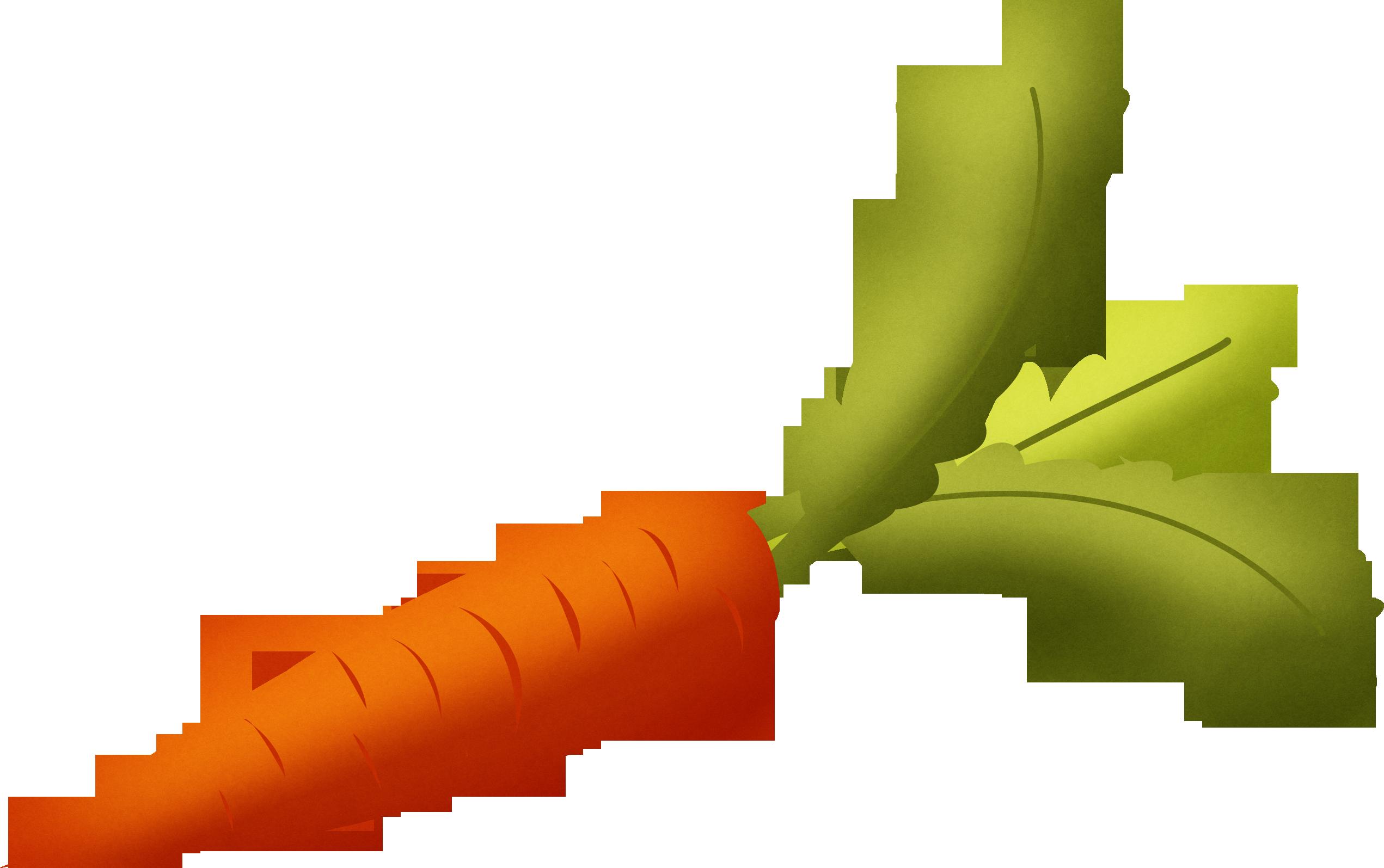 Carrot vegetable clipart #9