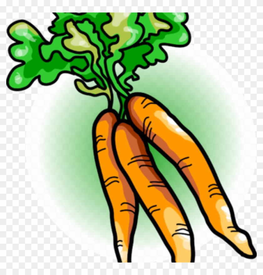 Carrot Clipart Free Carrot Clipart Image Carrots Food.