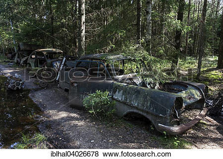 "Pictures of ""Auto graveyard in the forest, junk cars, Kyrko Mosse."
