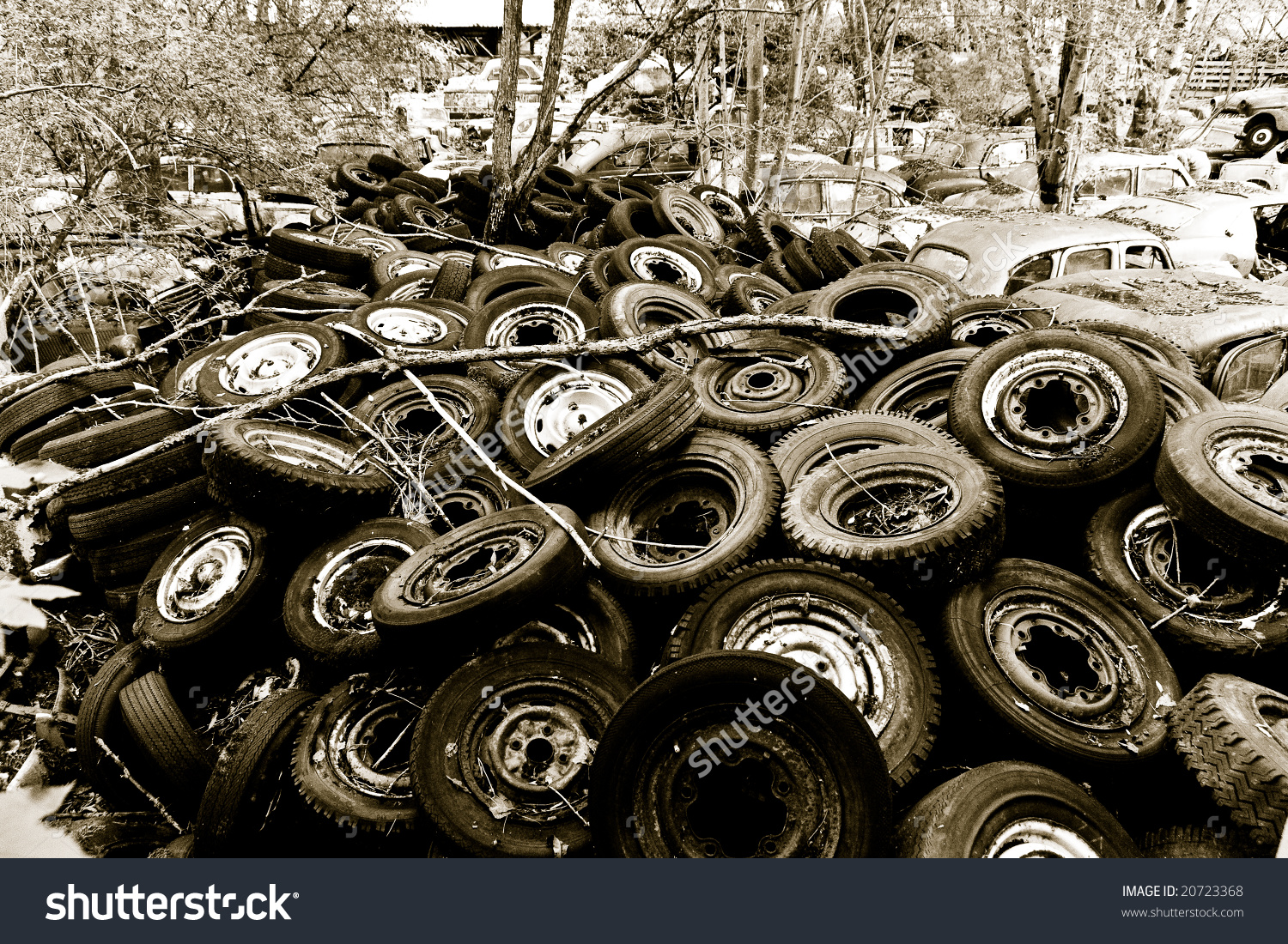 Old Cars On A Car Cemetery In Switzerland Stock Photo 20723368.
