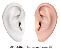 Ear cartilage Clipart and Stock Illustrations. 13 ear cartilage.