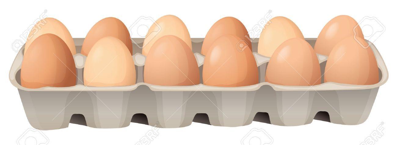 egg carton illustration.