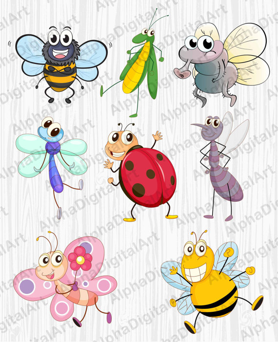 8 Cartoon Insects clipart,caterpillar clipart,butterfly clipart.