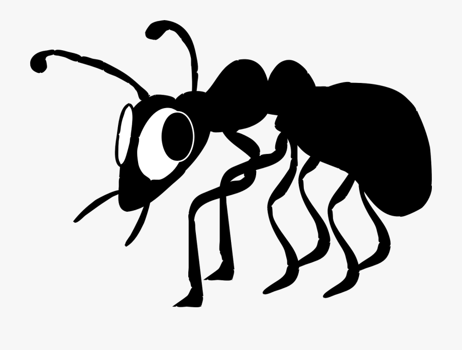 Ant Clipart Small Animal.