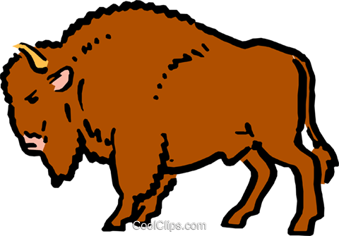 Cartoon buffalo Royalty Free Vector Clip Art illustration anim0584.