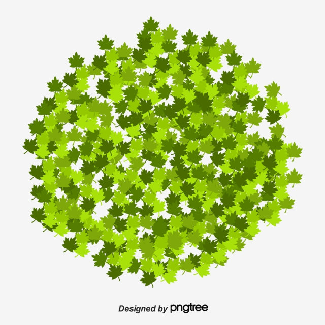 Bushes PNG Images, Download 631 Bushes PNG Resources with.