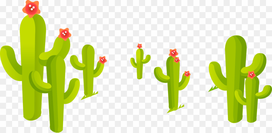 Cactus PNG Cartoon Clipart download.