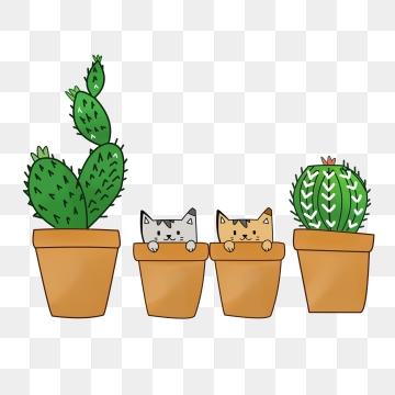 Cartoon Cactus PNG Images.