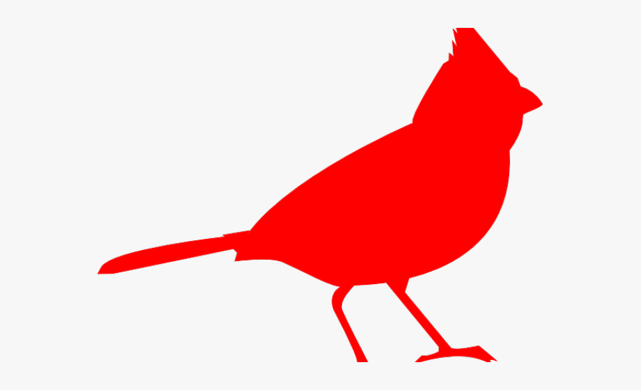 Cardinal Clipart Line Drawing.