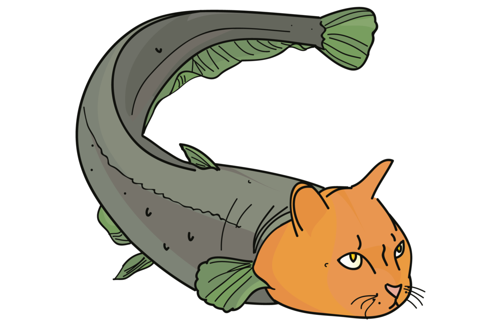 Free Cartoon Catfish Pictures, Download Free Clip Art, Free Clip Art.