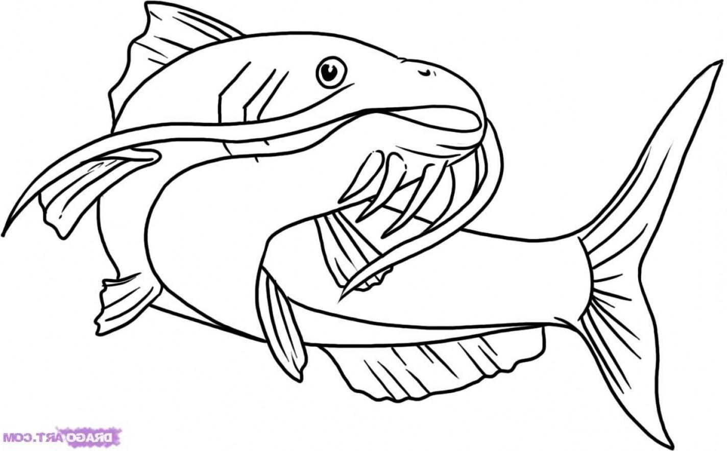 Cartoon Catfish Vector Id K Ud Um Ud Us Udx Uw Ud Uh Ud Clipart.