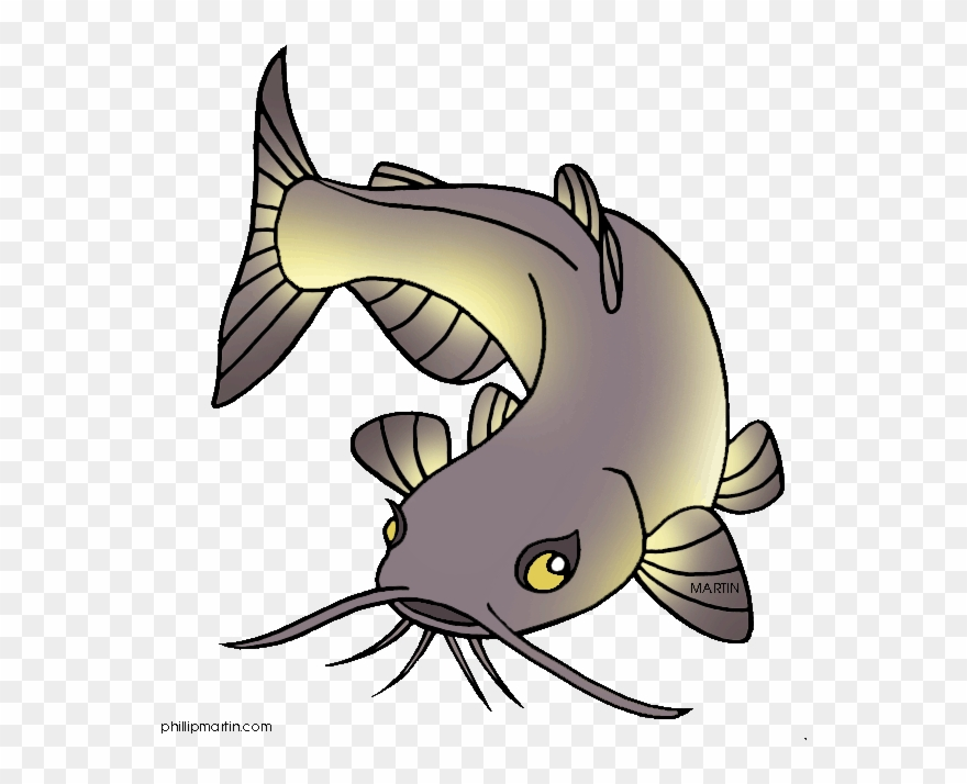 Channel Catfish Clip Art.