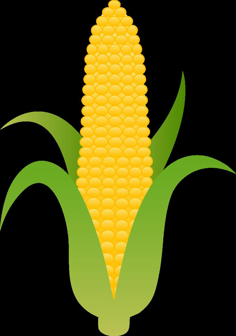 Cartoon corn clipart corn vegetable clip art.