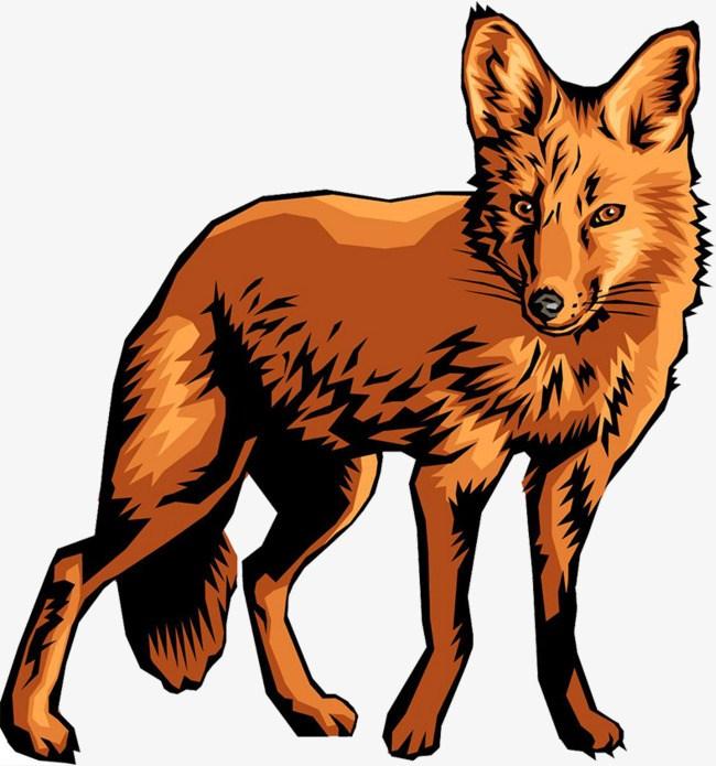 Cartoon coyote clipart 4 » Clipart Portal.