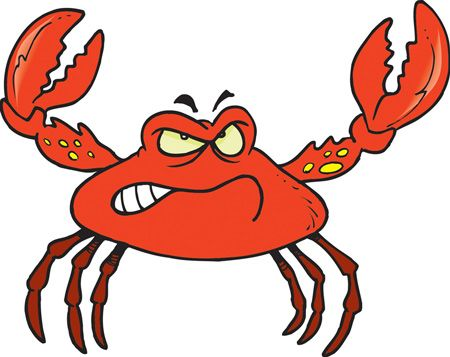 funny pictures of crabs.