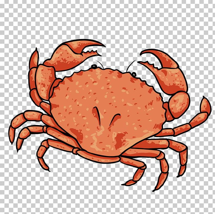Dungeness Crab Lobster PNG, Clipart, Animals, Animal Source Foods.