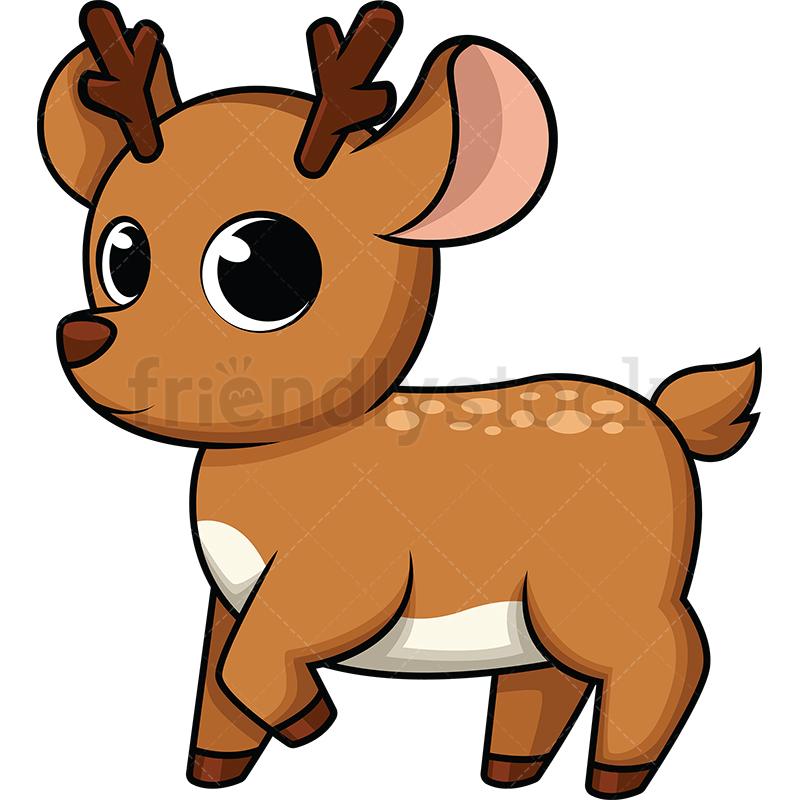 Cute Baby Deer.