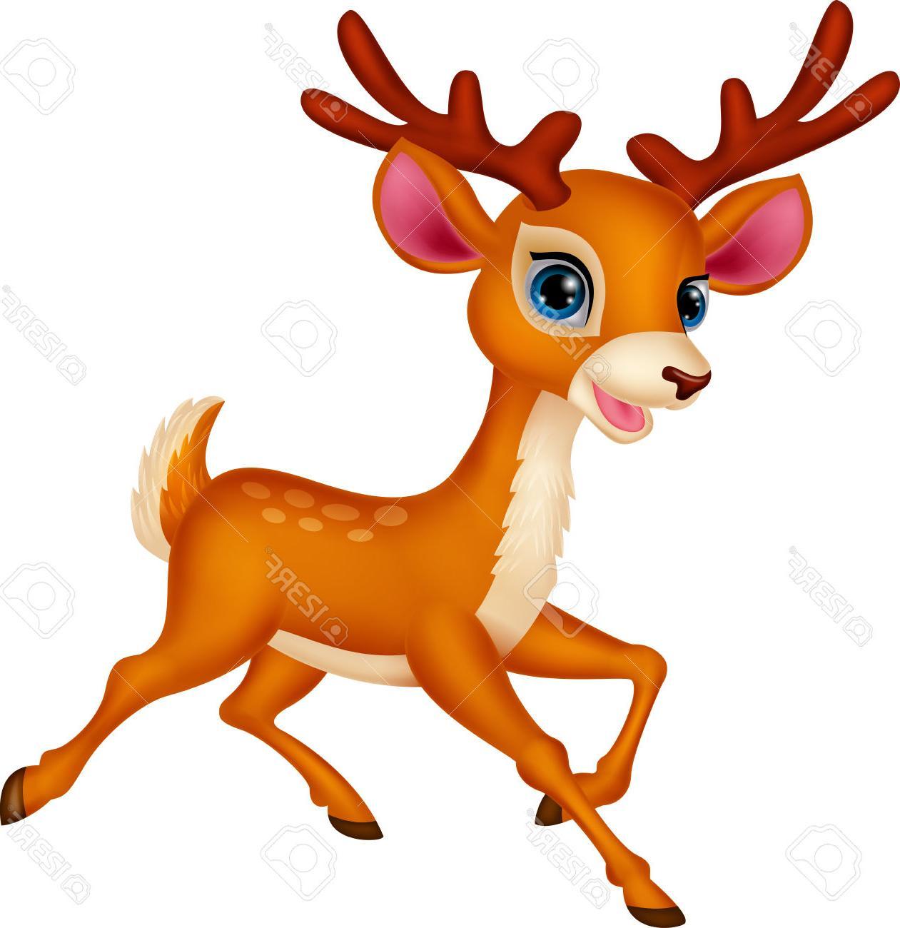 Cartoon Pictures Of Deer.