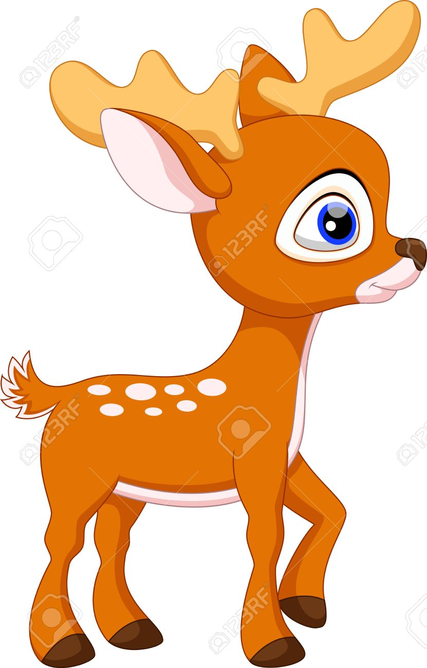 Cute baby deer cartoon.