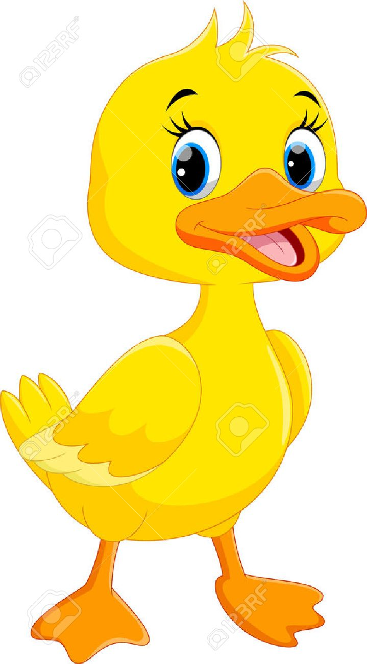 Cute duck cartoon isolated on white background.