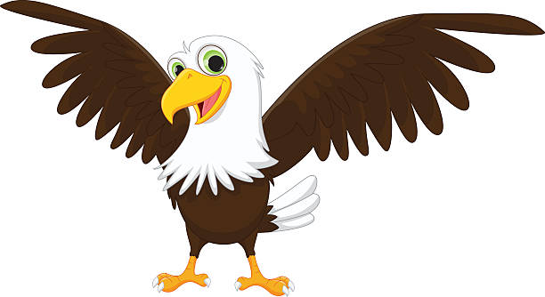 Best Eagle Funny Illustrations, Royalty.