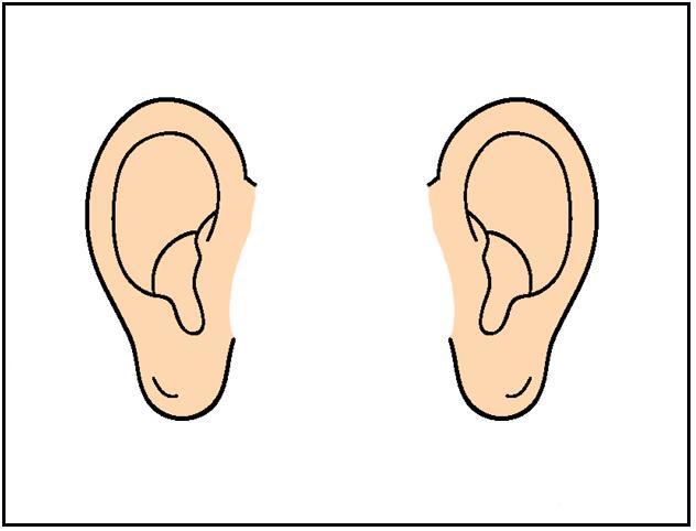Cartoon Ears Clipart.