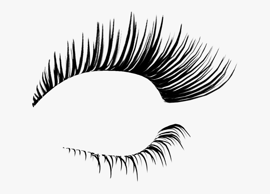 Transparent Eyelashes Clipart.