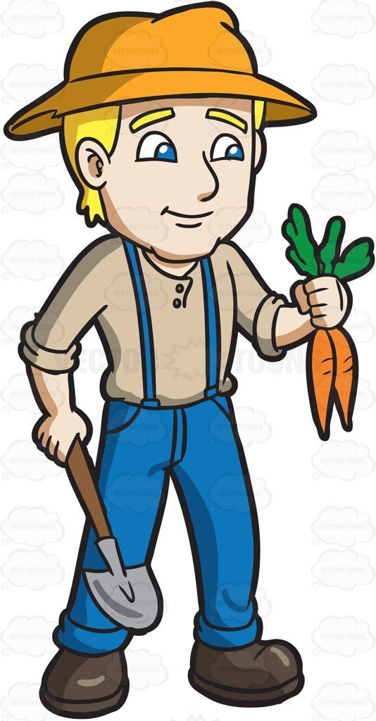 A farmer harvesting carrots #cartoon #clipart #vector.