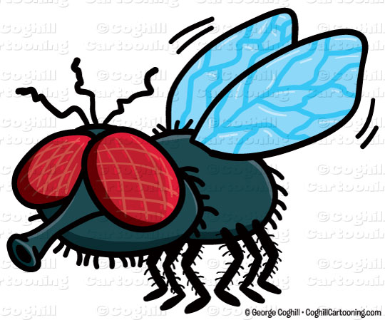 Cartoon flies clipart » Clipart Station.