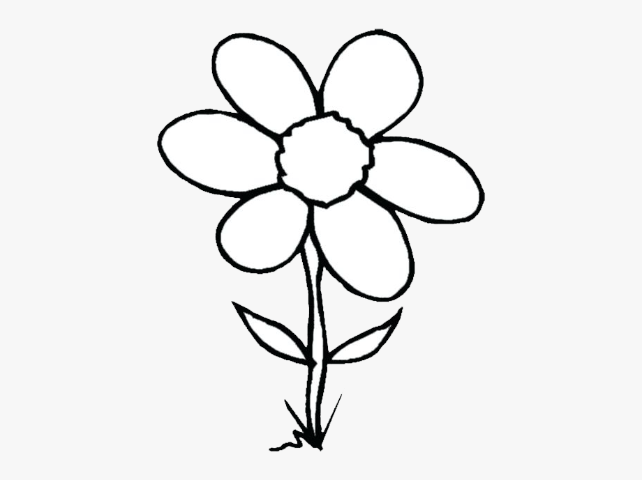 999 Flower Clipart Black And White Free Download Cloud.