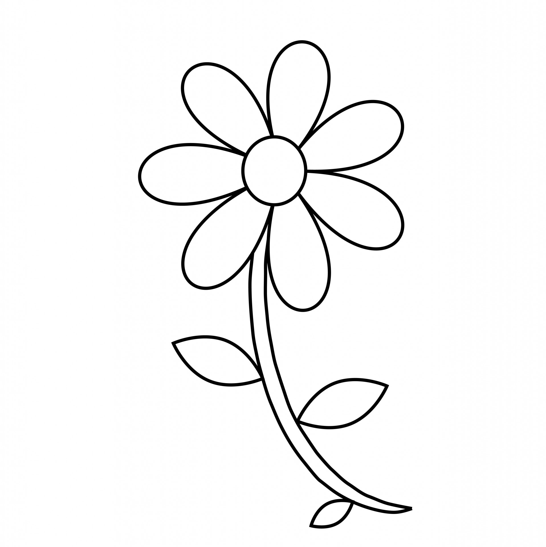 Showing post & media for Cartoon flower outline.