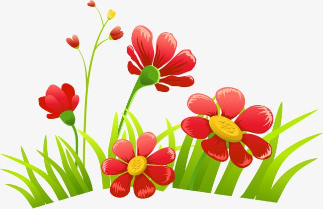 Flower Cartoon Png.